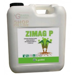 wholesale pesticides GOBBI ZIMAG P CONCIME FOSFATICO FLUIDO