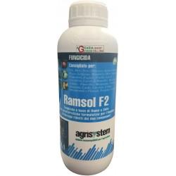 AGRISYSTEM RAMSOL F2 FUNGICIDA A BASE RAME E ZOLFO CUTHIOL LT. 1